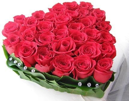 Букет шикарных роз картинки